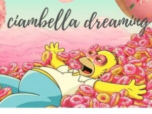 homer simpson donuts ciambell